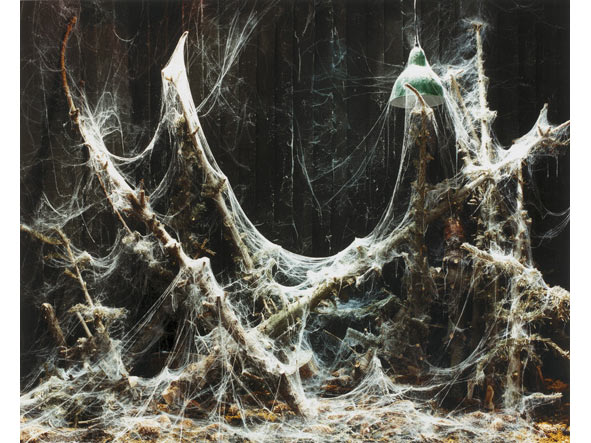 Untitled I (cobwebs)