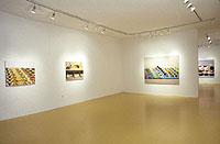 "Sharon Core ""Thiebauds"" Installation view"