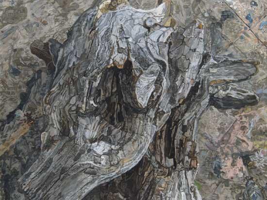 Driftwood 2 (Studio Floor)