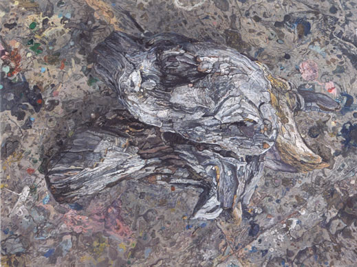 Driftwood (Studio Floor)