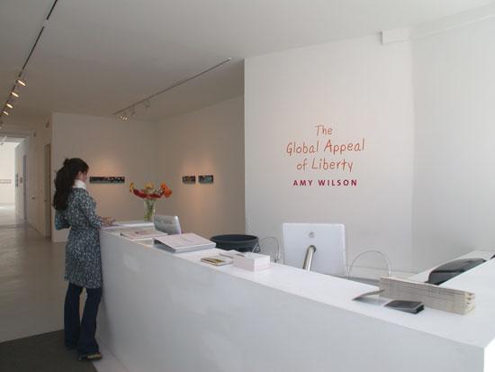 Amy Wilson Installation view