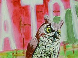 """Owl...Chinatownland"""